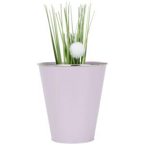 Kvetináč Na Rastliny Poppyseed